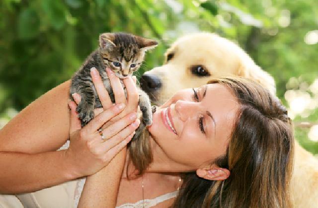 Животных в России любят