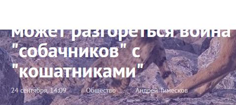тимескова оболгал АнтиДогхантеров, которые с его слов, обещали убивать кошек, на зло догхантерам