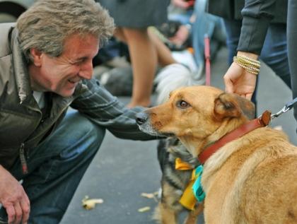 «В теме защиты животных, я отделяюсь от государства» - Леонид Ярмольник.