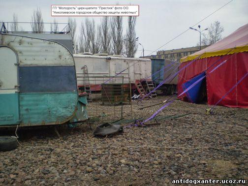 Состоялась комплексная инспекционная проверка содержания в неволе диких животных цирка-шапито «Кобзов»