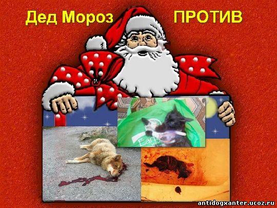 Дед Мороз - против живодеров