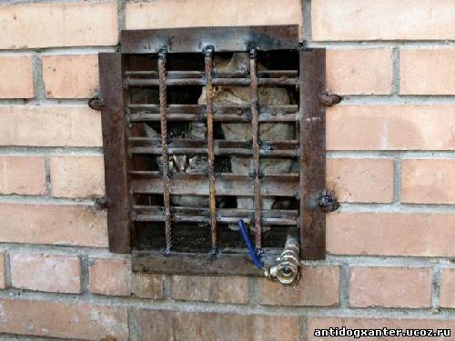 Коммунальщики замуровывают кошек в подвалах домов