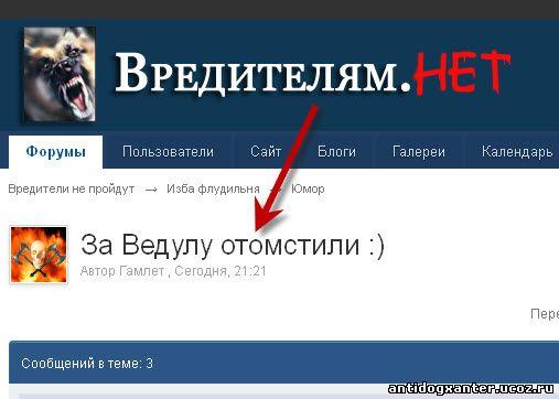 догхантеры и комрад Алексей Ведула