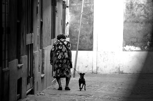 Существует выигрышная комбинация в борьбе с одиночеством: старик и собака