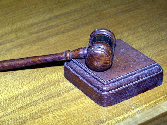 В вынесен первый обвинительный приговор за жестокое обращение с животными