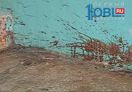 Живодеры догхантеры долго мучили одного из питомцев, замазав все стены подъезда кровью.
