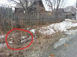 9-летняя девочка, которая стала свидетелем убийства