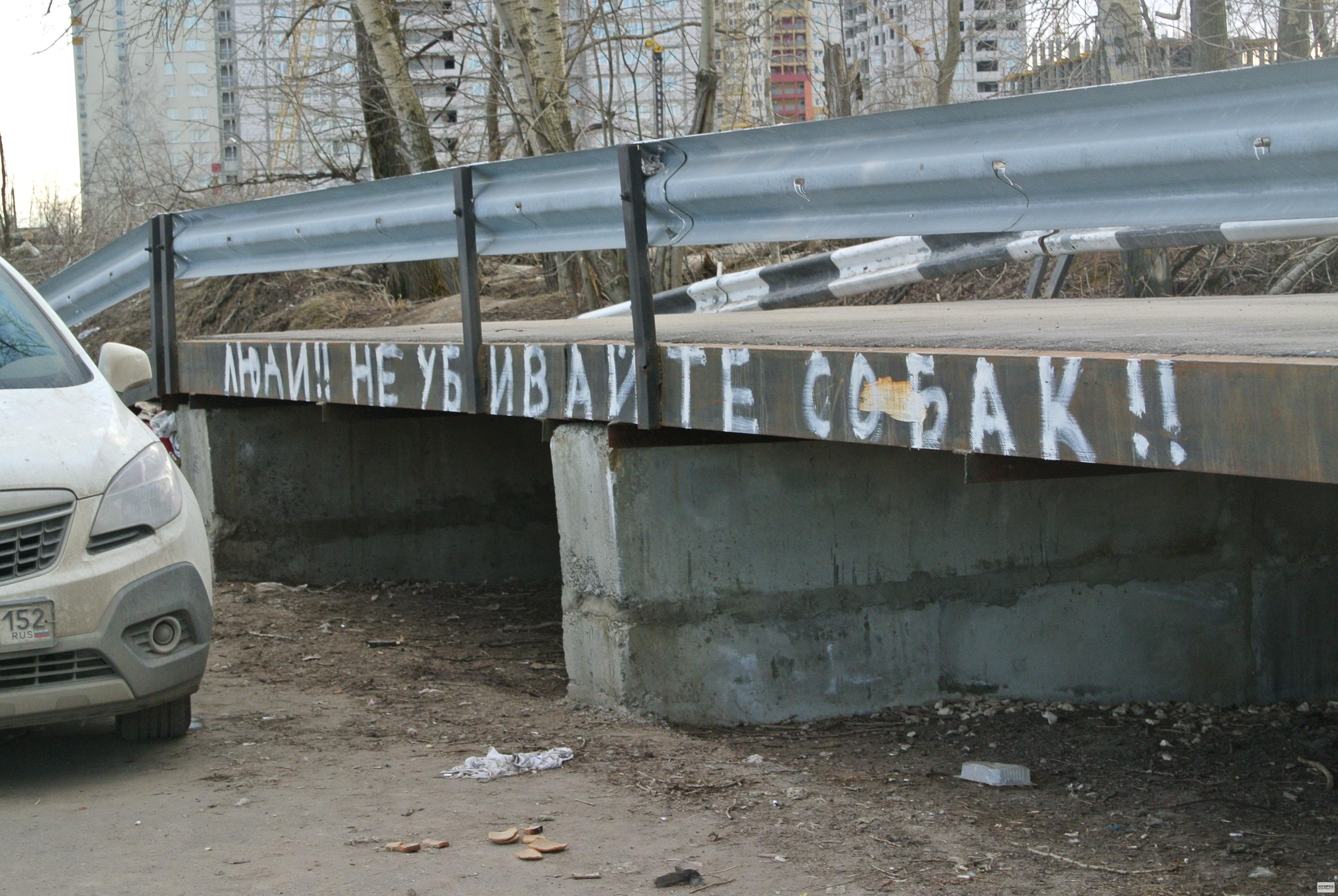 В Кузнечихе догхантеры отстреливают собак(ФОТО)