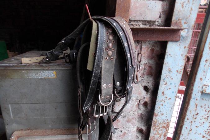 Зоозащитники выступают против создания в Приморье конвейеров смерти