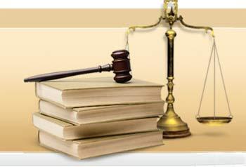 В Ангарске завершено расследование уголовного дела по факту жестокого обращения с животными
